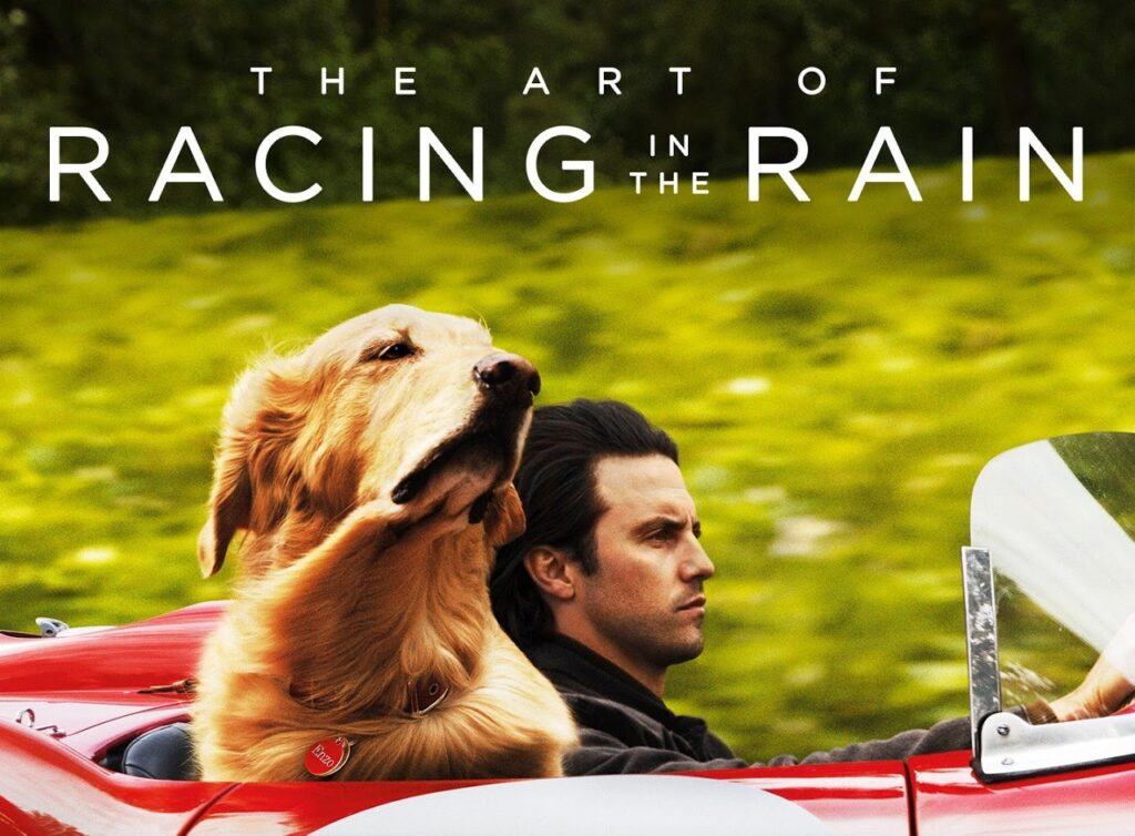 THE ART OF RACING IN THE RAIN film kapak fotoğrafı